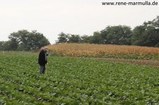 IMG 2012 09 15 1321a
