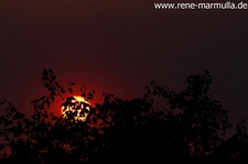 2013 06 07 IMG 4817a