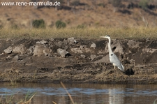 2013 06 13 IMG 8181a